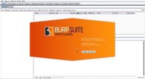 Burp Suite PRO Crack Plus License Key Torrent 2019 (Latest Version)
